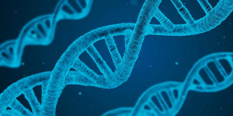A vez da terapia genética